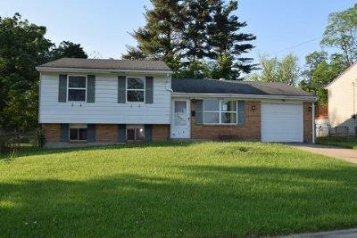 Colerain Twp Single Family Home For Sale: 3210 New Year Drive