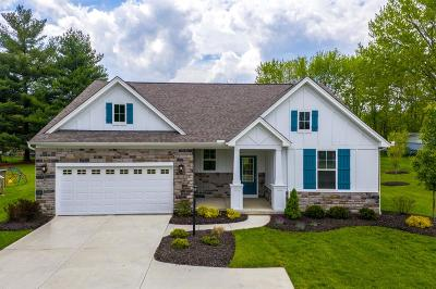 Deerfield Twp. Single Family Home For Sale: 9831 Rich Road