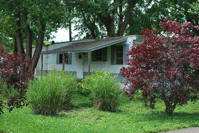 Clinton County Single Family Home For Sale: 506 E Main Street
