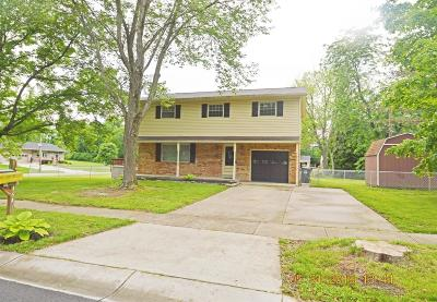 Single Family Home For Sale: 1647 Yellowglen Drive