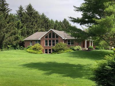 Turtle Creek Twp Single Family Home For Sale: 2014 Greentree Road