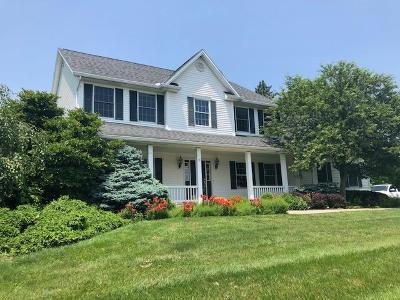 Clinton County Single Family Home For Sale: 120 Woods Edge Court