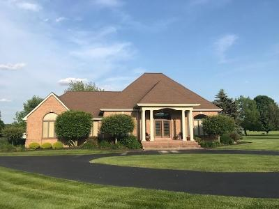 Adams County, Brown County, Clinton County, Highland County Single Family Home For Sale: 38 Pheasant Run Lane