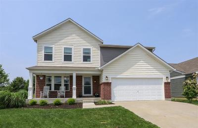 Turtle Creek Twp Single Family Home For Sale: 1589 Black Wolf Drive