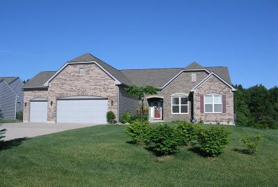 Turtle Creek Twp Single Family Home For Sale: 241 Oxon Pass