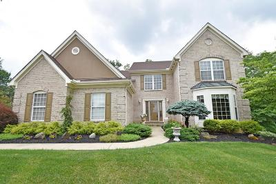 Single Family Home For Sale: 968 Tyndale Court