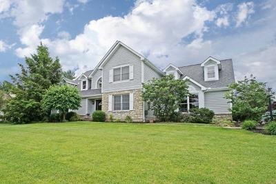 Single Family Home For Sale: 1203 Red Roan Lane