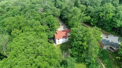 Single Family Home For Sale: 3841 Mount Carmel Road