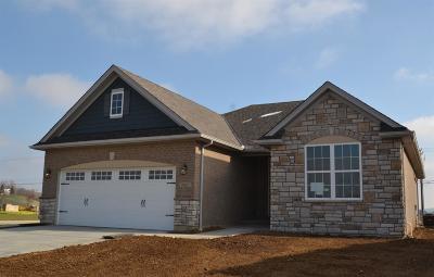 Ross Twp Single Family Home For Sale: 2021 Demoret Lane #VC15