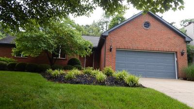 Single Family Home For Sale: 9097 Country View Lane