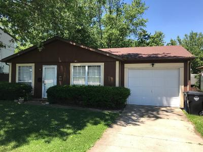 Adams County, Brown County, Clinton County, Highland County Single Family Home For Sale: 429 Clinton Street