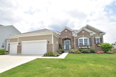 Single Family Home For Sale: 817 Hocking Meadow Circle