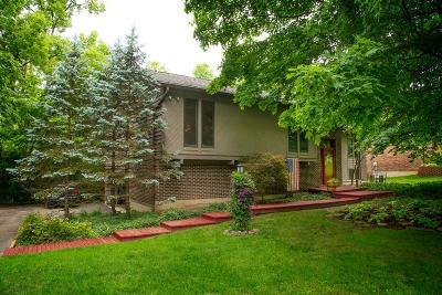 Middletown Single Family Home For Sale: 4491 Burnham Woods Drive