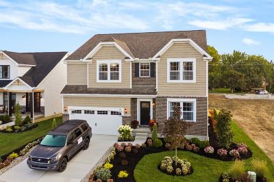 Single Family Home For Sale: 476 Dorothy Lane #14
