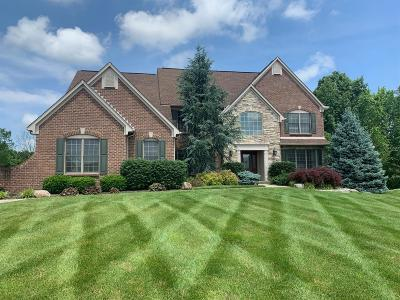 Single Family Home For Sale: 6681 Sandy Shores Drive