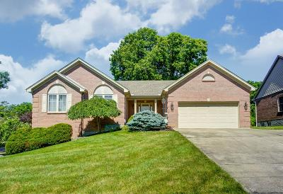 Colerain Twp Single Family Home For Sale: 8287 Wuest Road