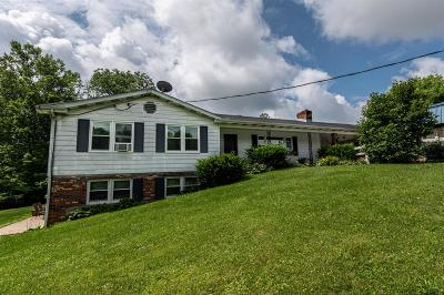 Adams County, Brown County, Clinton County, Highland County Single Family Home For Sale: 5264 Tri County Highway