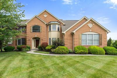 Single Family Home For Sale: 6272 Blackheath Circle