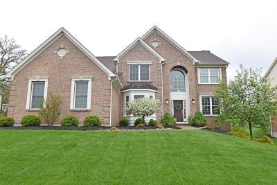 Single Family Home For Sale: 1262 Ridgewood Drive