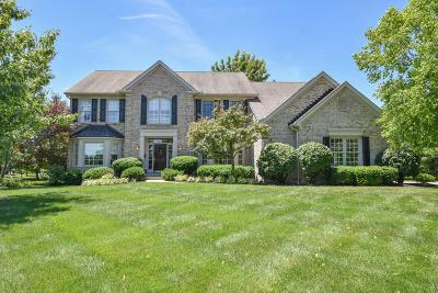 Single Family Home For Sale: 8089 Silkyrider Court
