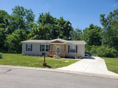 Adams County, Brown County, Clinton County, Highland County Single Family Home For Sale: 612 Cross Creek Drive