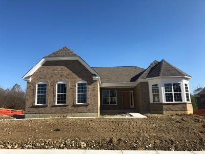 Turtle Creek Twp Single Family Home For Sale: 1736 Red Clover Drive #396