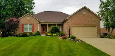 Single Family Home For Sale: 10120 Meadowknoll Drive