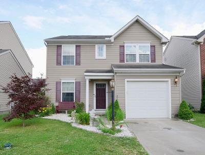 Hamilton County, Butler County, Warren County, Clermont County Single Family Home For Sale: 6025 Marsh Circle