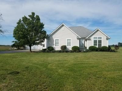 Clinton County Single Family Home For Sale: 940 Peelle Road