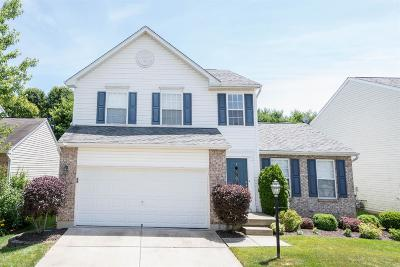 Warren County Single Family Home For Sale: 531 Indian Lake Drive