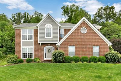 Single Family Home For Sale: 6774 Little River Lane