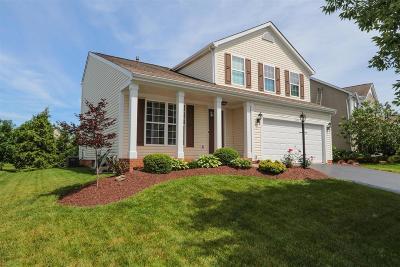 Single Family Home For Sale: 7692 Livingston Court