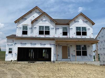 Single Family Home For Sale: 6784 Charlestown Lane #9