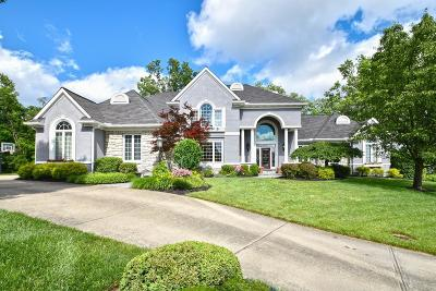 Delhi Twp Single Family Home For Sale: 1239 Greenery Lane