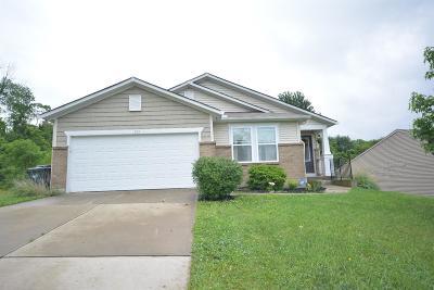 Hamilton County, Butler County, Warren County, Clermont County Single Family Home For Sale: 202 Regatta Drive