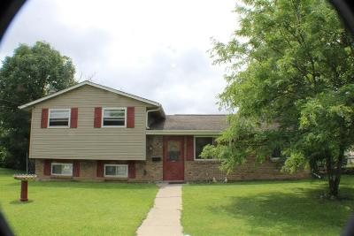 Hamilton County, Butler County, Warren County, Clermont County Single Family Home For Sale: 10124 Pottinger Road