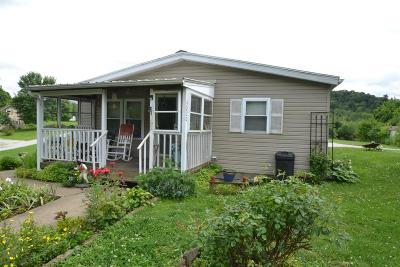 Adams County, Brown County, Clinton County, Highland County Single Family Home For Sale: 3020 Eagle Drive