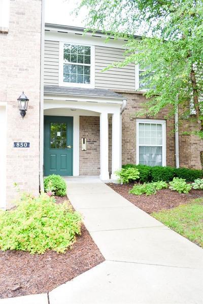 Hamilton County, Butler County, Warren County, Clermont County Condo/Townhouse For Sale: 850 Southmeadow Circle #101