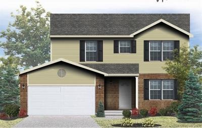 Warren County, Clermont County, Hamilton County, Butler County Single Family Home For Sale: 47 Sean Court