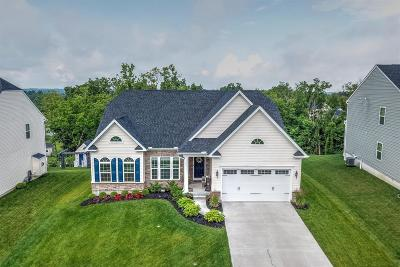 Colerain Twp Single Family Home For Sale: 8577 Forest Valley Drive