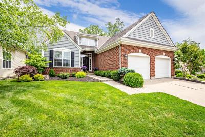 Warren County Single Family Home For Sale: 6860 Prairie View Drive