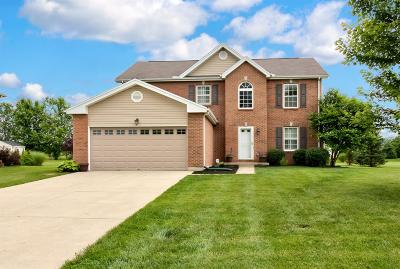 Liberty Twp OH Single Family Home For Sale: $309,900