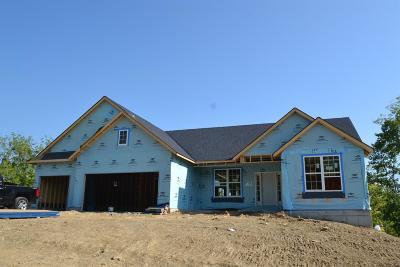 Ross Twp Single Family Home For Sale: 3378 Robina Lane #RT233