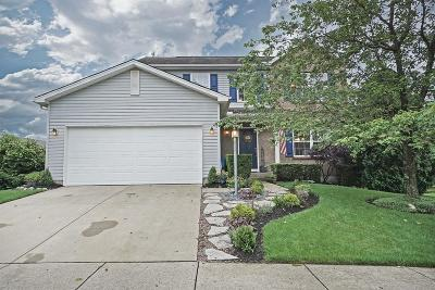 Single Family Home For Sale: 855 Thornton Drive