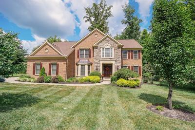 Single Family Home For Sale: 113 Ridgewood Drive