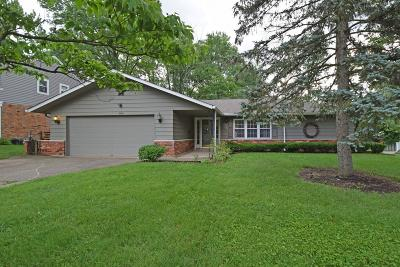 Single Family Home For Sale: 9558 Lansford Drive
