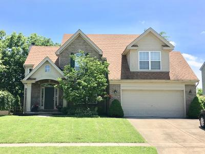 Harrison, Lawrenceburg Single Family Home For Sale: 625 Valley Trails Drive