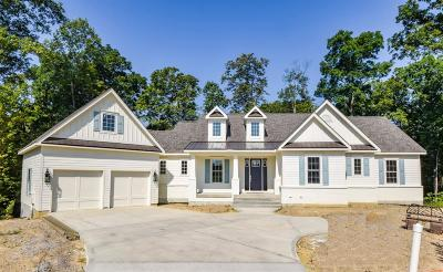 Single Family Home For Sale: 423 Trailview Court