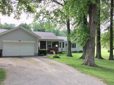 Adams County, Brown County, Clinton County, Highland County Single Family Home For Sale: 735 Waynoka Drive