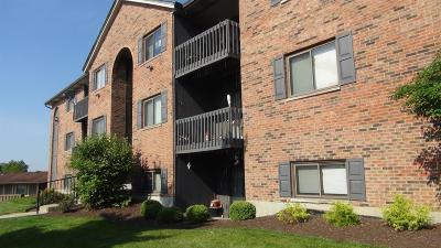 West Chester Condo/Townhouse For Sale: 5060 Tri County View Drive